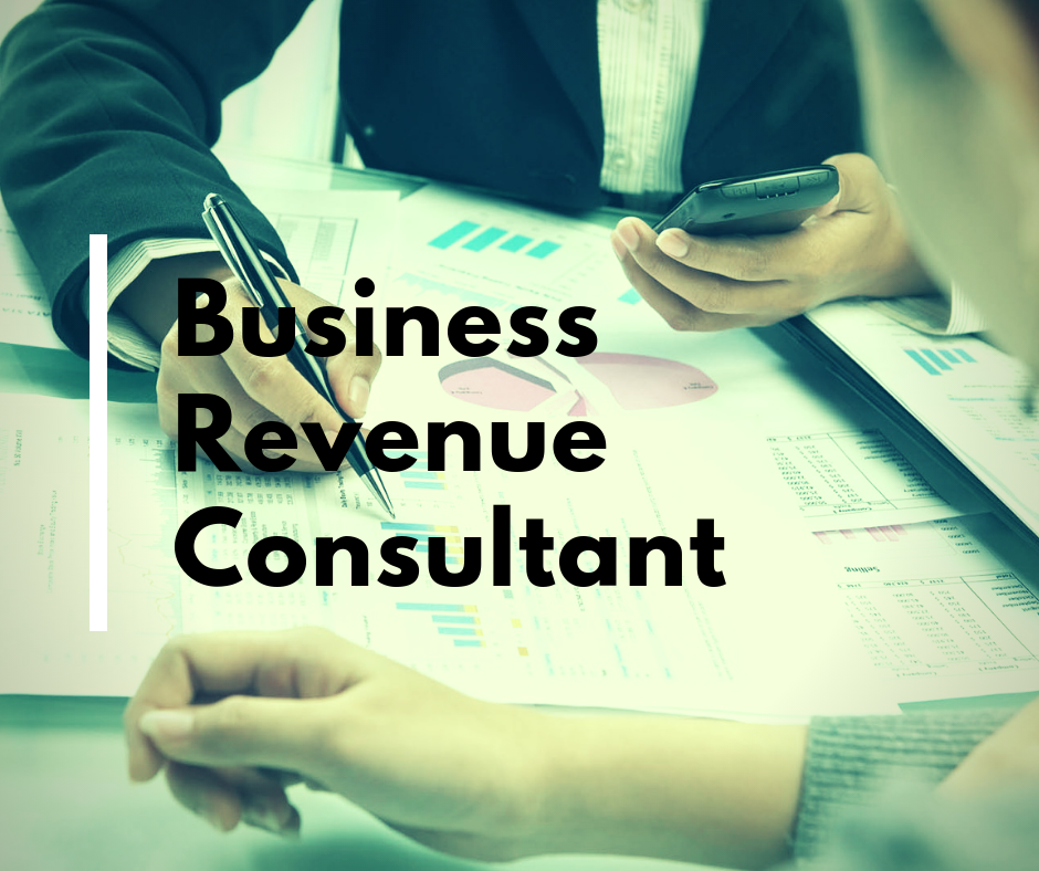Business Revenue Consultant